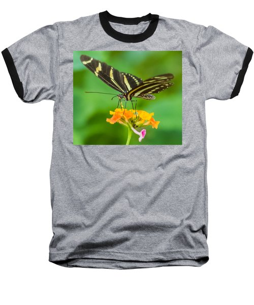 Baseball T-Shirt featuring the photograph Zebra Longwing by Jane Luxton