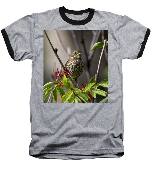 Fox Sparrow Baseball T-Shirt