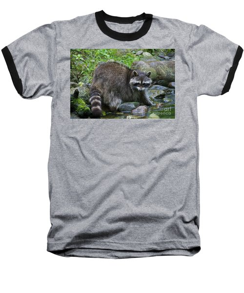 Baseball T-Shirt featuring the photograph 130201p047 by Arterra Picture Library