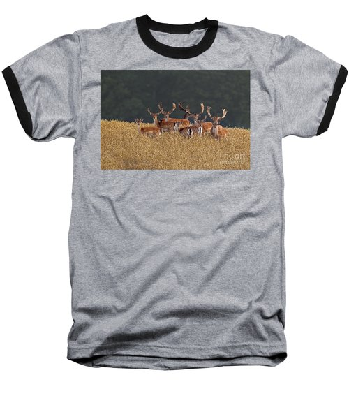 Baseball T-Shirt featuring the photograph 130201p298 by Arterra Picture Library
