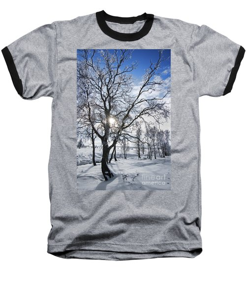 Baseball T-Shirt featuring the photograph 130201p341 by Arterra Picture Library