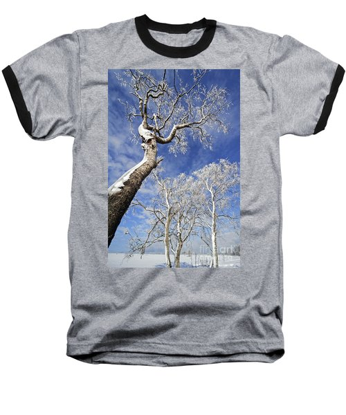 Baseball T-Shirt featuring the photograph 130201p343 by Arterra Picture Library