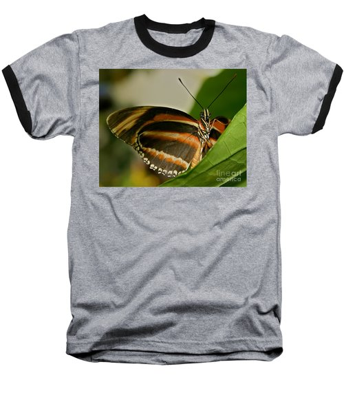 Baseball T-Shirt featuring the photograph Butterfly by Olga Hamilton