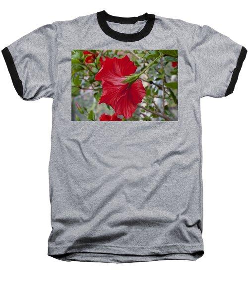 Abstract Hibiscus Baseball T-Shirt
