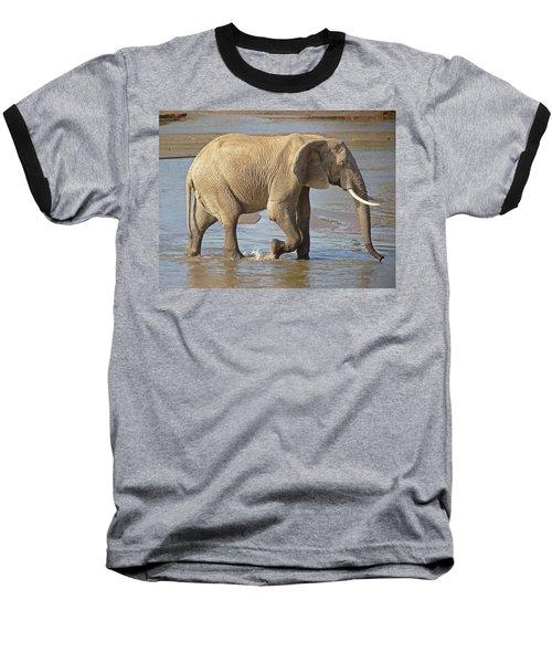 African Elephant Baseball T-Shirt
