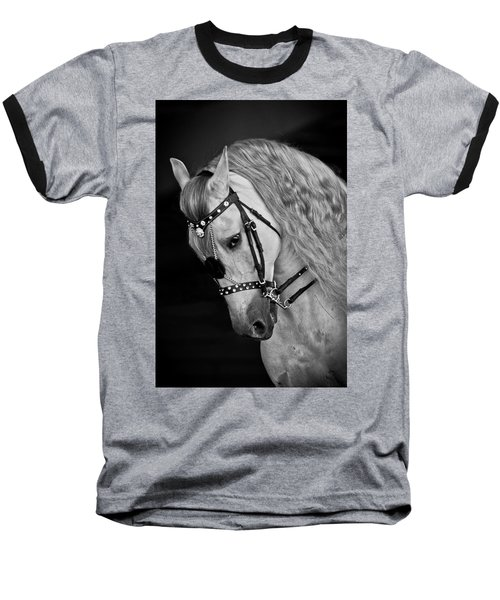 Andalusian Baseball T-Shirt by Wes and Dotty Weber