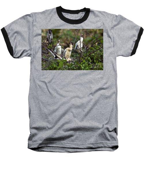 Baby Anhinga Baseball T-Shirt by Mark Newman