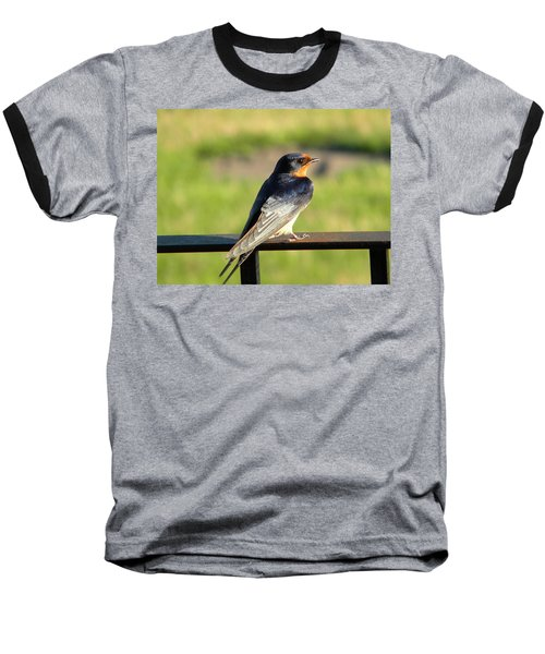 Barn Swallow Baseball T-Shirt