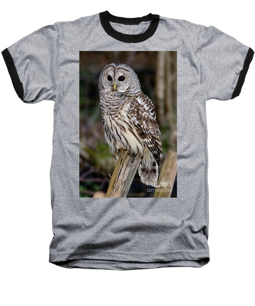 Baseball T-Shirt featuring the photograph Barred Owl by Les Palenik