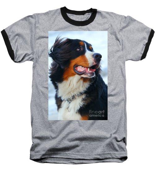 Beautiful Dog Portrait Baseball T-Shirt
