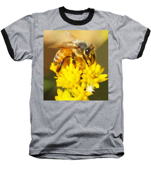 Bee On A Yellow Flower Baseball T-Shirt by Marian Cates