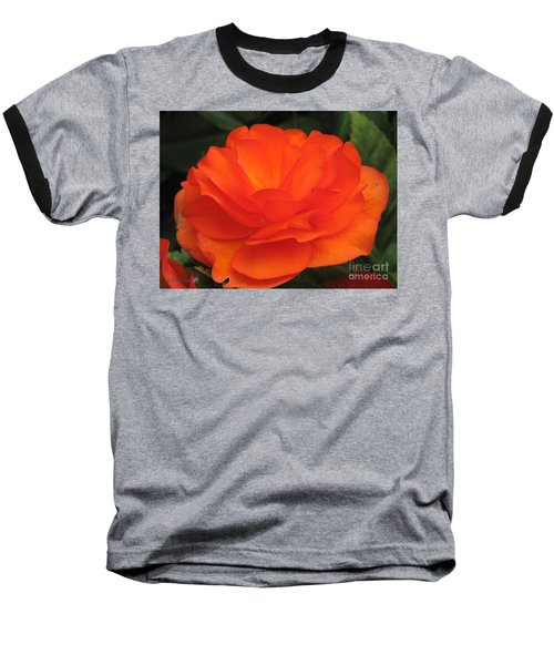 Baseball T-Shirt featuring the photograph Begonia Named Nonstop Apricot by J McCombie