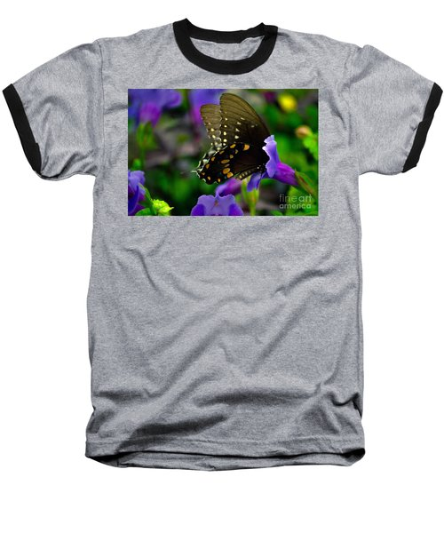 Black Swallowtail Baseball T-Shirt by Angela DeFrias