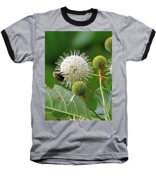 Bumbler Baseball T-Shirt
