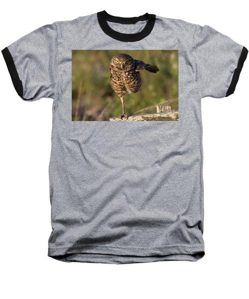 Burrowing Owl Photograph Baseball T-Shirt by Meg Rousher