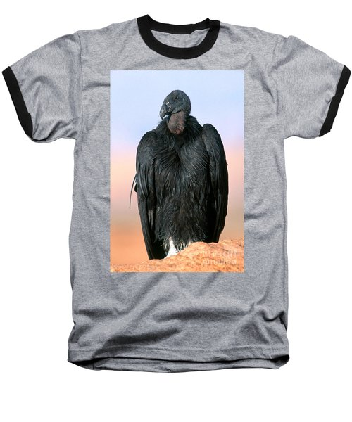California Condor Baseball T-Shirt