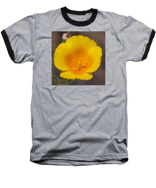 California Sunshine Baseball T-Shirt by Caitlyn  Grasso