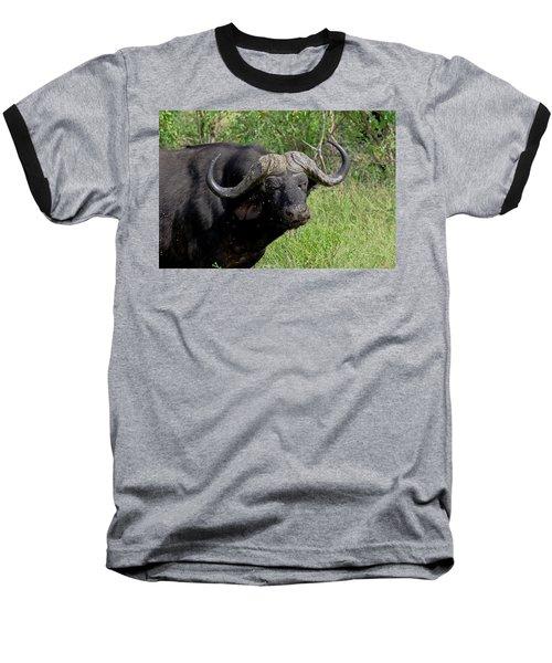 Cape Buffalo Baseball T-Shirt