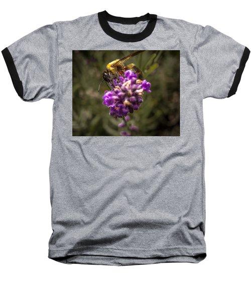 Carpenter Bee On A Lavender Spike Baseball T-Shirt