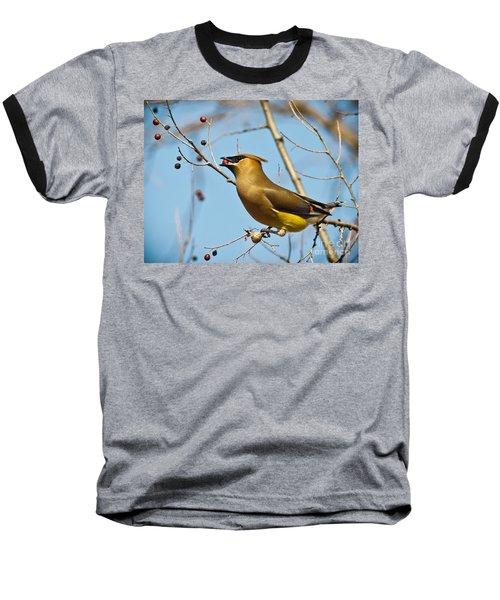 Cedar Waxwing With Berry Baseball T-Shirt by Robert Frederick