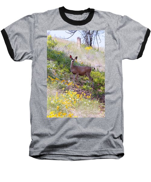 Deer In Wildflowers Baseball T-Shirt by Athena Mckinzie