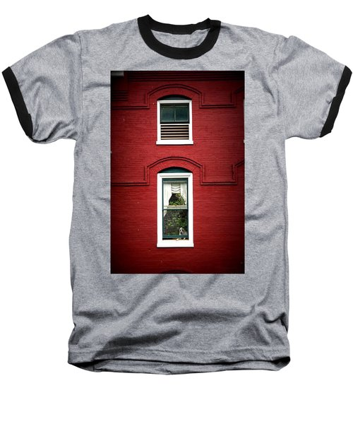 Doggie In The Window Baseball T-Shirt