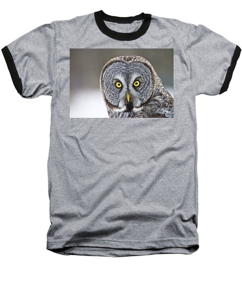 Great Gray Owl Portrait Baseball T-Shirt
