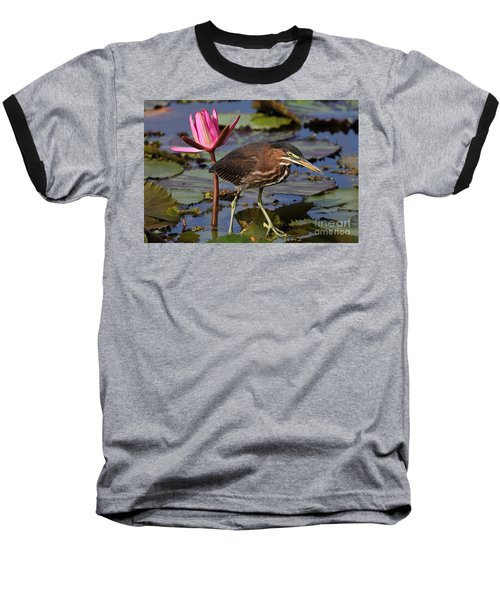 Green Heron Photo Baseball T-Shirt
