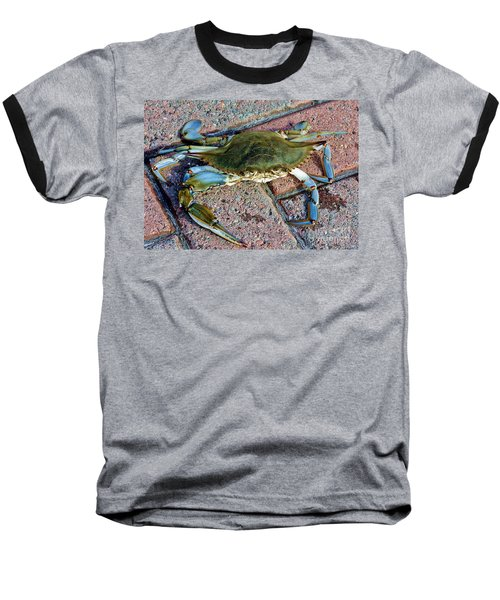 Baseball T-Shirt featuring the photograph Hudson River Crab by Lilliana Mendez