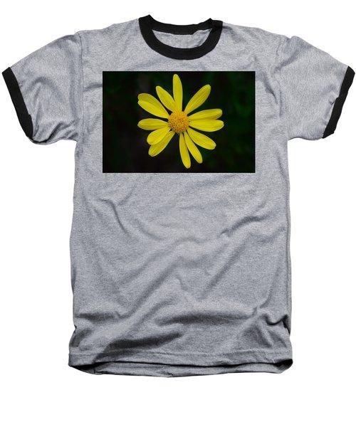 Isolated Daisy Baseball T-Shirt by Debra Martz