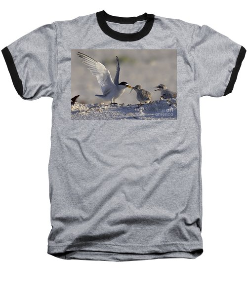 Least Tern Feeding It's Young Baseball T-Shirt by Meg Rousher