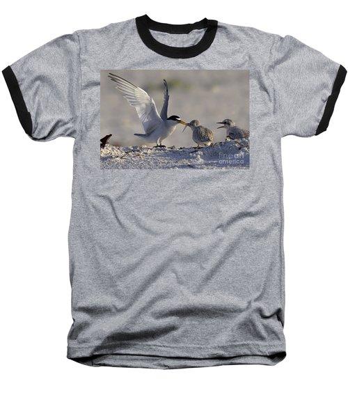 Least Tern Feeding It's Young Baseball T-Shirt
