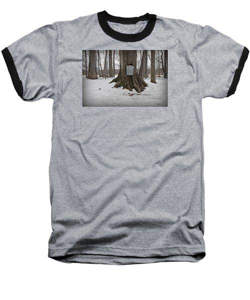 Maple Sugaring Baseball T-Shirt by John Stephens