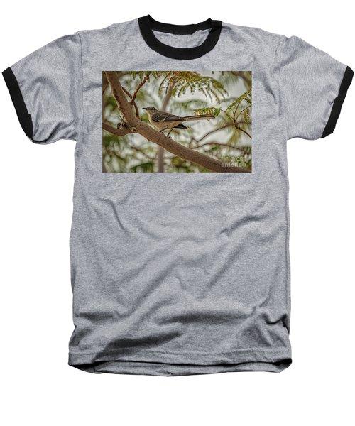 Mockingbird Baseball T-Shirt