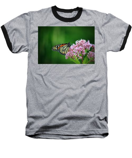 Monarch In Light  Baseball T-Shirt