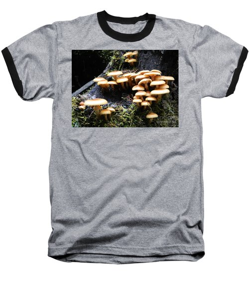 Mushrooms On A Stump Baseball T-Shirt by Chalet Roome-Rigdon
