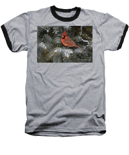 Northern Cardinal Baseball T-Shirt