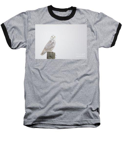 Observant Baseball T-Shirt by Cheryl Baxter