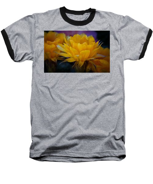 Orange Cactus Flowers  Baseball T-Shirt