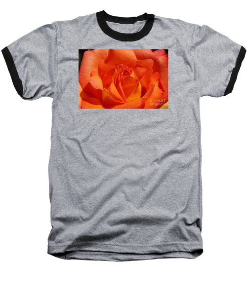 Orange Rose 1 Baseball T-Shirt by Rudi Prott