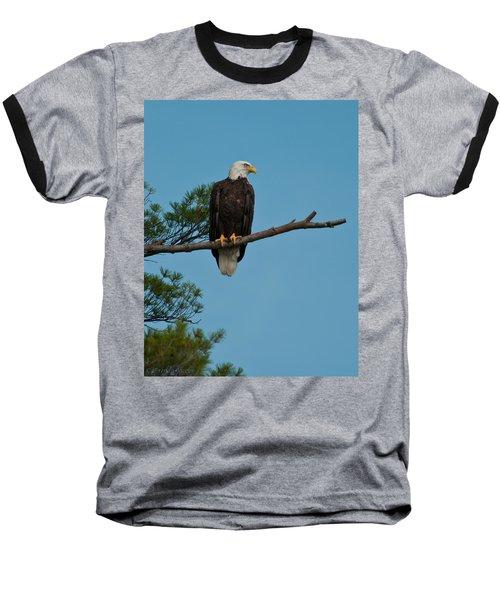 Out On A Limb Baseball T-Shirt