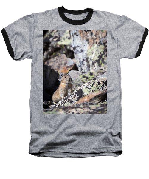 Pika Baseball T-Shirt