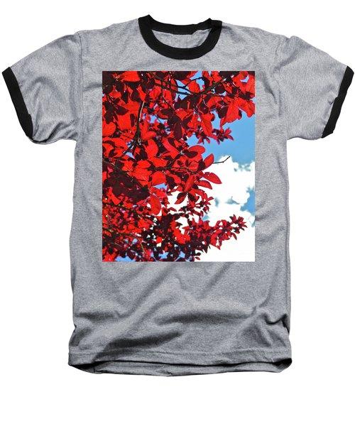 Plum Tree Cloudy Blue Sky 3 Baseball T-Shirt by CML Brown