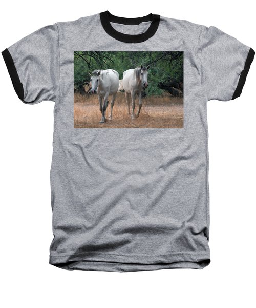 Salt River Wild Horse Baseball T-Shirt
