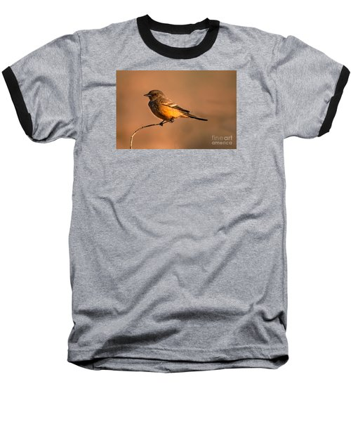 Say's Phoebe Baseball T-Shirt
