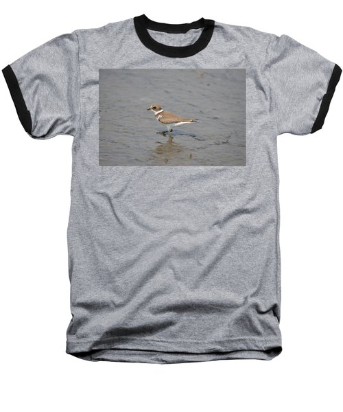 Semipalmated Plover Baseball T-Shirt