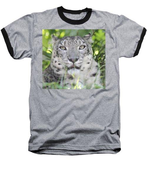 Snow Leopard Baseball T-Shirt by John Telfer