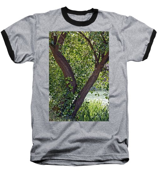 Baseball T-Shirt featuring the photograph Tree At Stow Lake by Kate Brown