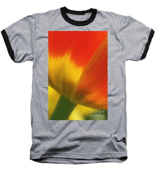 Tulip Close Up 2 Baseball T-Shirt by Rudi Prott