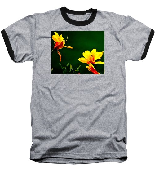 Talking Flower Heads Baseball T-Shirt